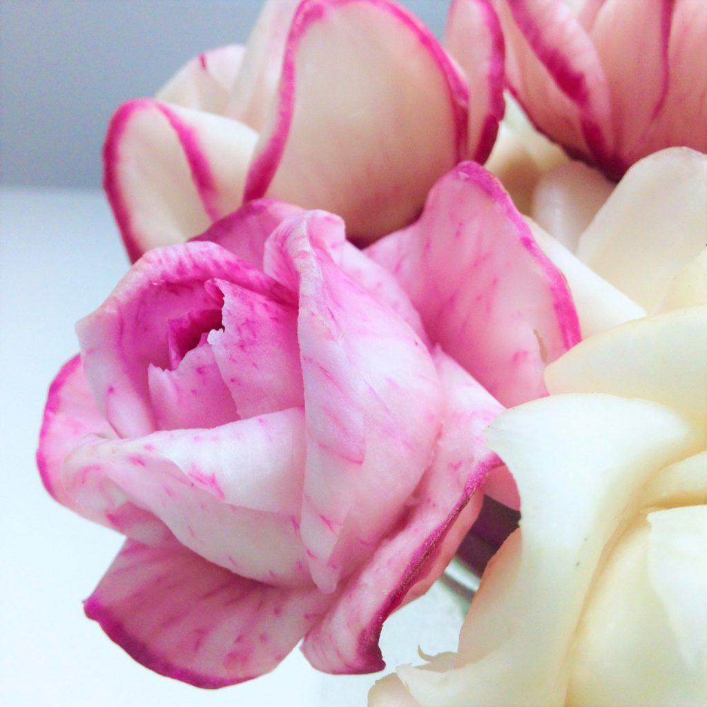 赤いカブで人気のくるり薔薇を彫るベジタブルカービング
