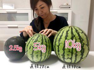スイカのサイズ、2.5kg、5kg、10kg