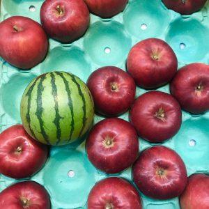 リンゴのように小さくて、可愛いスイカ
